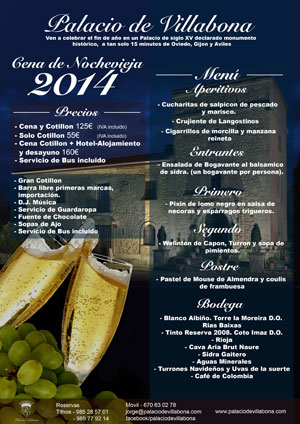Fiesta de Nochevieja 2014 en el Palacio de Villabona