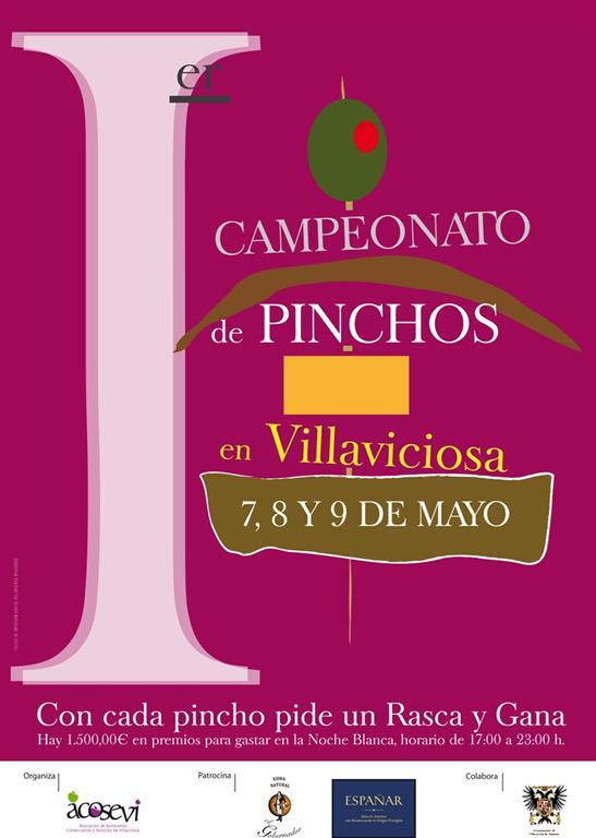 campeonatopinchosvilla2010-large