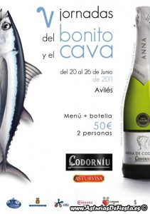 bonitoaviles2011-1024x768