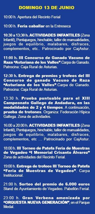 feriavegadeo2010-c