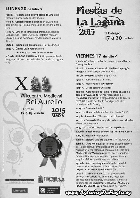 2015 programa LALAGUNA grises castellano