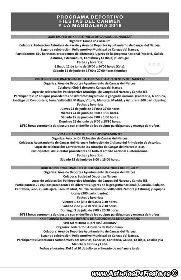carman narcea 2016 e (Copiar)