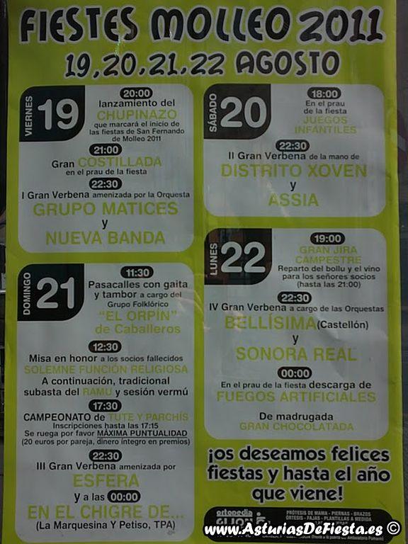 molleohevia2011-1024x768