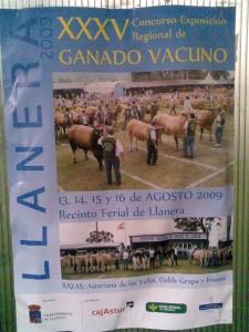exposicion-ganado-vacuno-en-llanera-2009
