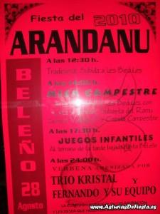 arandanobeleno2010-1024x768