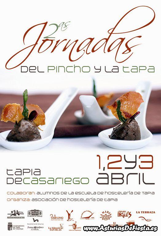 jornadaspinchotapia2011-1024x768