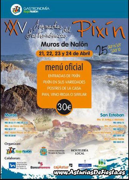 jornadaspixinmurosnalon2011-800x600
