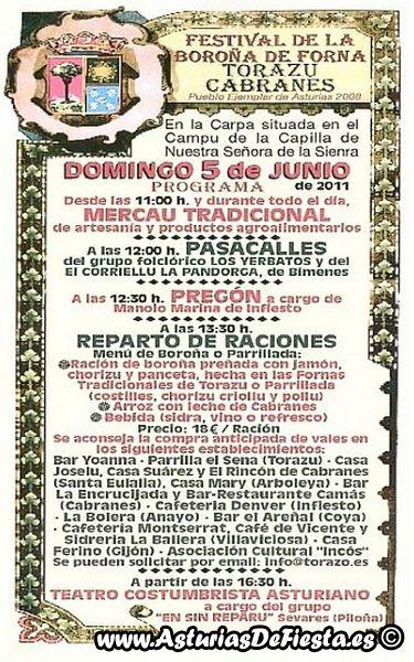 boronatorazo2011-b-800x600