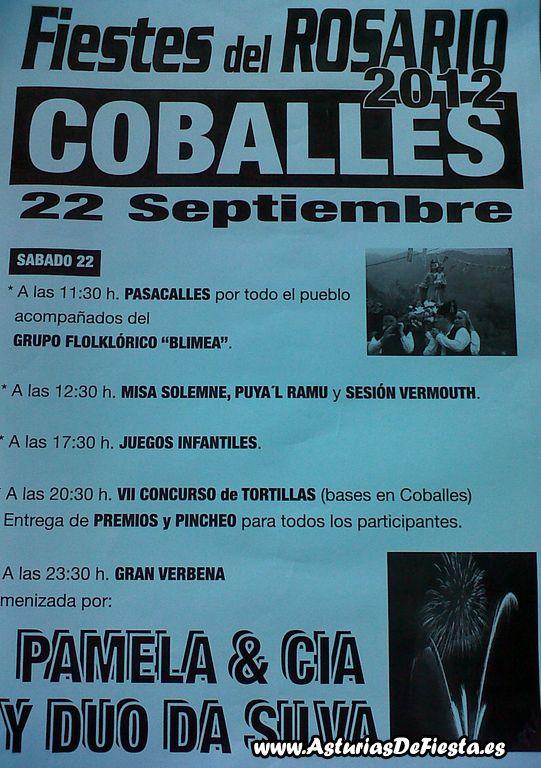 coballescaso2012-1024x768
