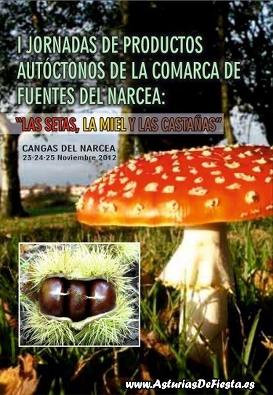 jornadasautoctonosnarcea2012-a-1024x768