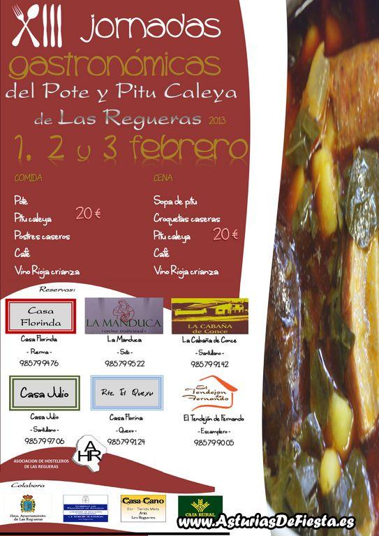 pituypotelasregueras2013 [1024x768]