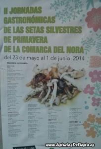 Setas comarca nora 2014 [1024x768]