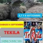 Fiestas de cardo 2014 - a [1024x768]