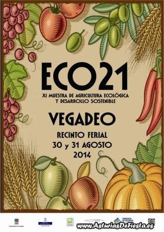 eco vegadeo 2014 [1024x768]