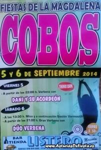 cobos 2014 [1024x768]