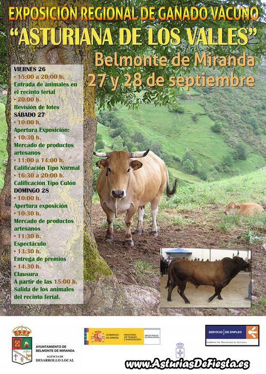 ganado belmonte 2014 [1024x768]