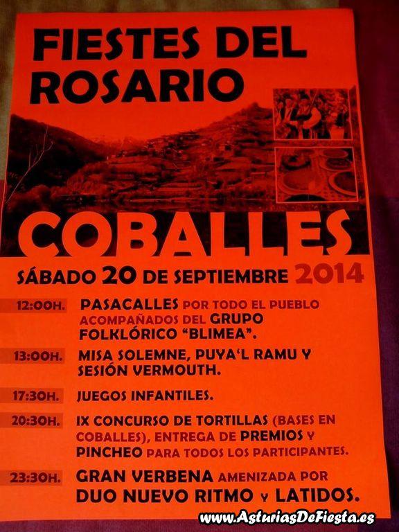 rosario coballes caso 2014 [1024x768]
