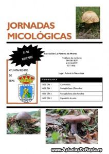 jornadas micologicas ibias 2014 [1024x768]