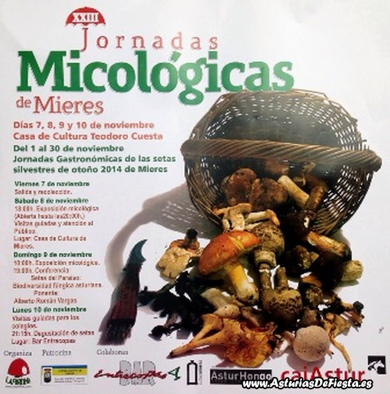 jornadas micologicas mieres 2014 [1024x768]