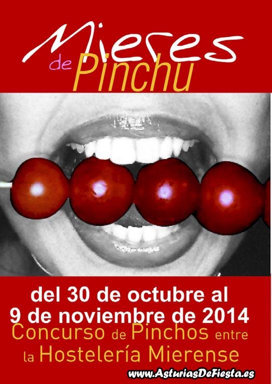Mieres de Pinchu 2014 - a [1024x768]