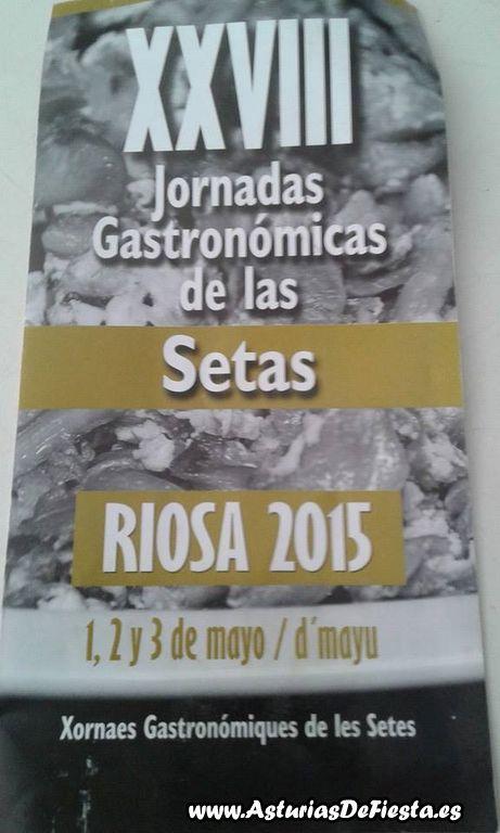 setas riosa 2015 [1024x768]
