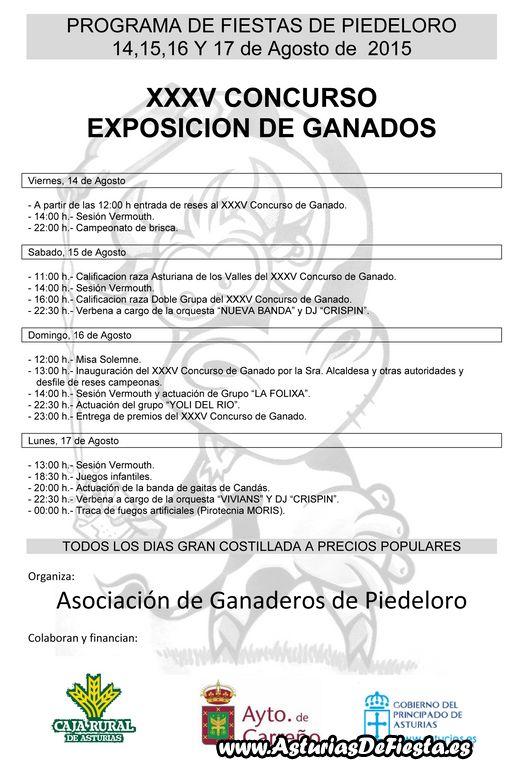 Microsoft Word - cartel fiesta2.doc