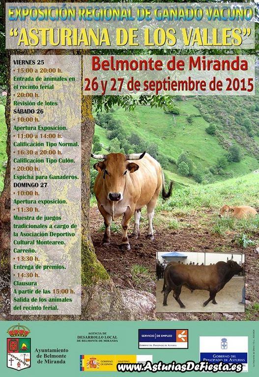 ganado belmonte 2015 [1024x768]