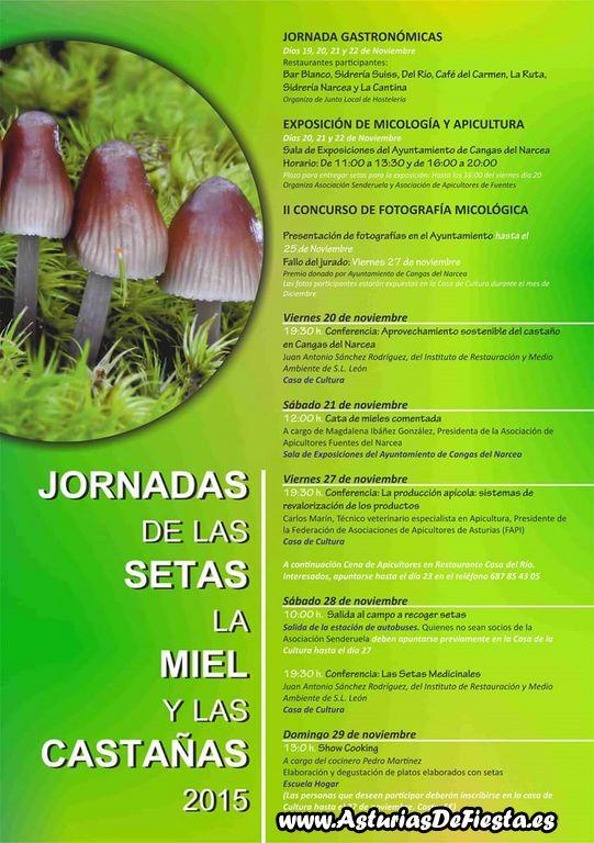 setas miel castañas cangas narcea 2015 [1024x768]