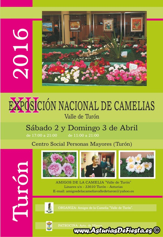 Cartel_Camelias_2016 (2) (Copiar)