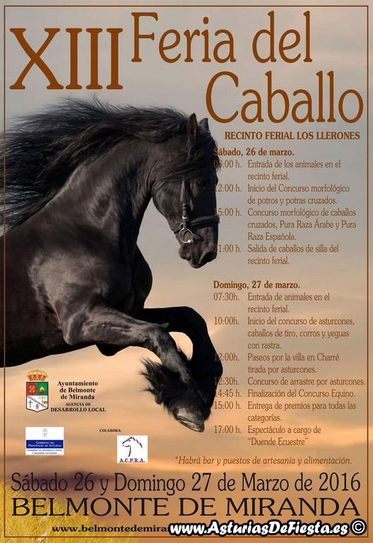 caballo belmonte 2016 (Copiar)