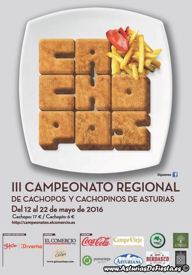 CACHOPOS ASTURIAS 2016 (Copiar) (Copiar)