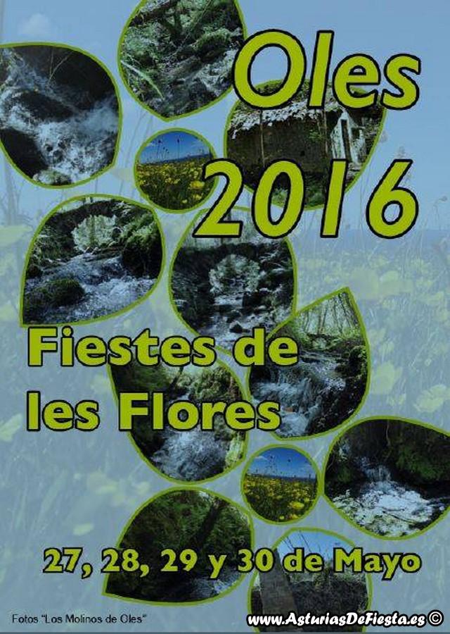 flores oles 2016 (Copiar)