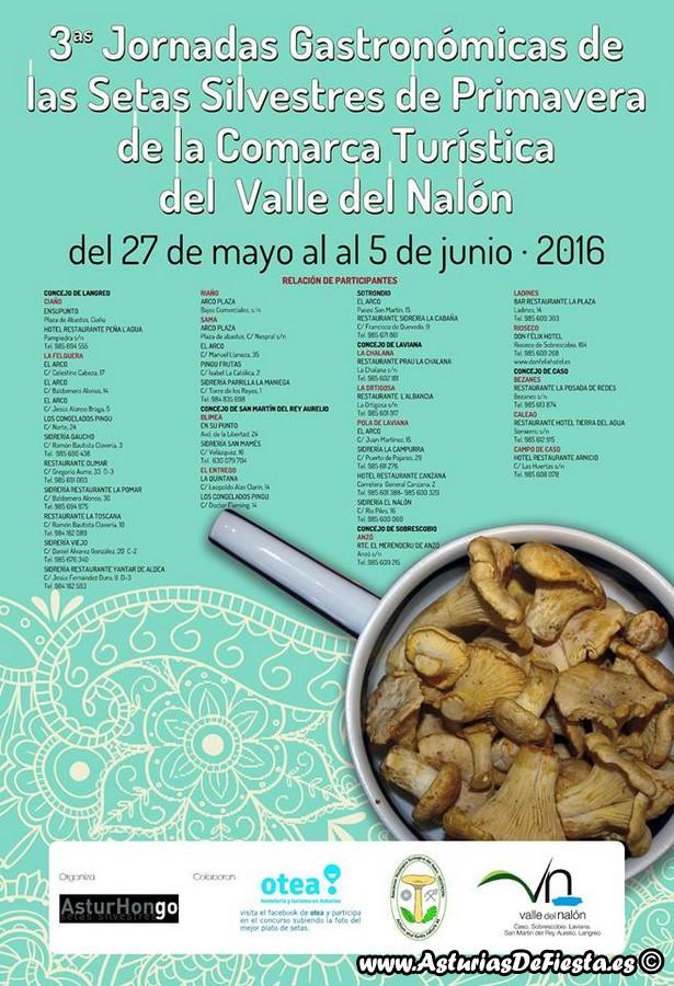 setas primavera valle nalon 2016 (Copiar)