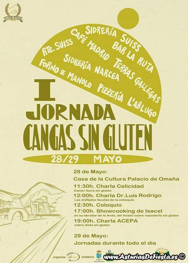 sin gluten narcea 2016 (Copiar)