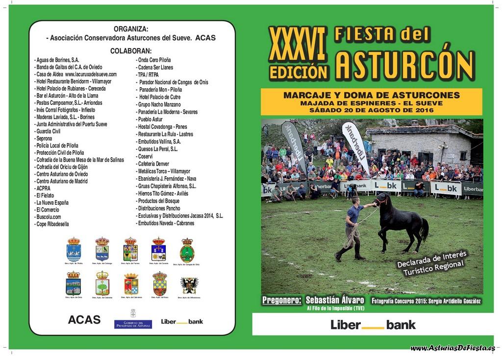 Diptico Asturcón B-001 (Copiar)