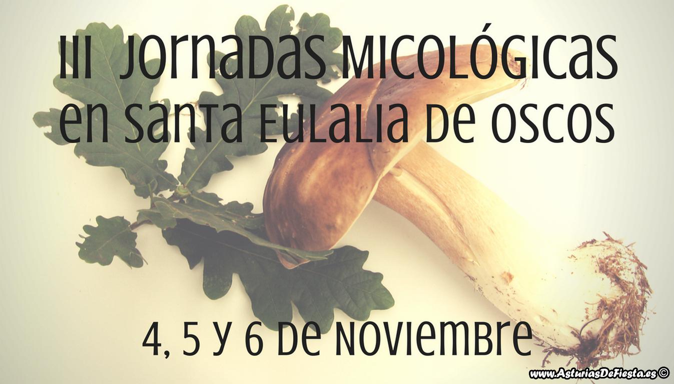 micologicas-santa-eulalia-2016-copiar-copiar