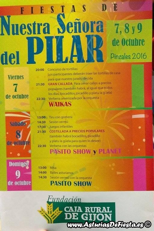 pilar-pinzales-2016-copiar
