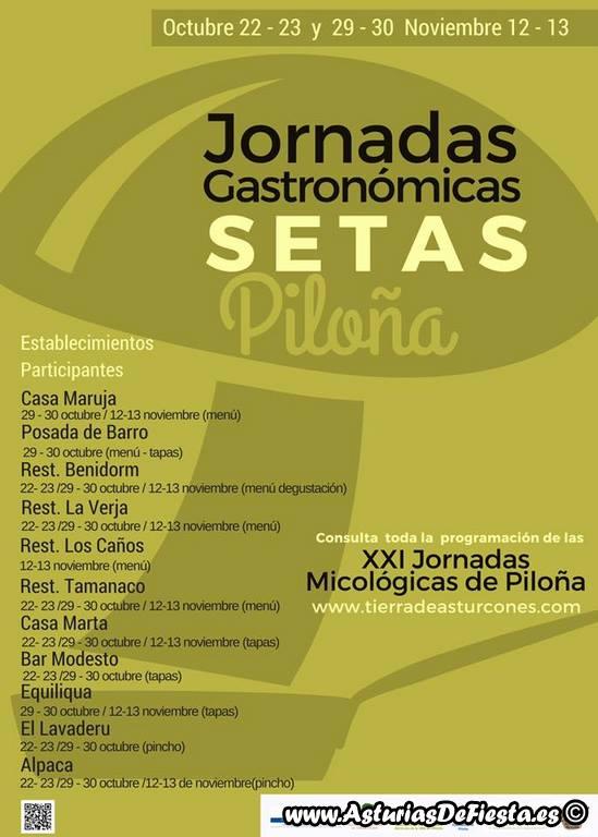 setas-pilona-2016-copiar