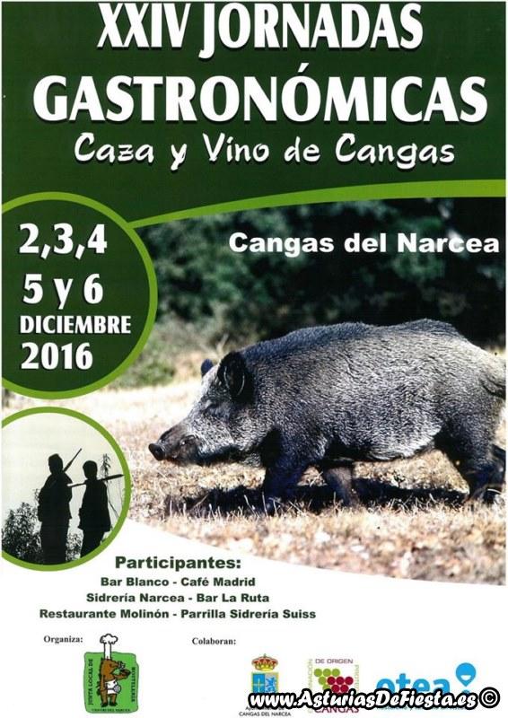caza-vino-cangas-2016-800x600