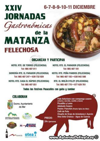 matanza-felechosa-2016-800x600