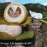 queso beyos 2017 [800x600]